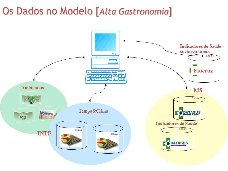 Os Dados no Modelo [Alta Gastronomia]